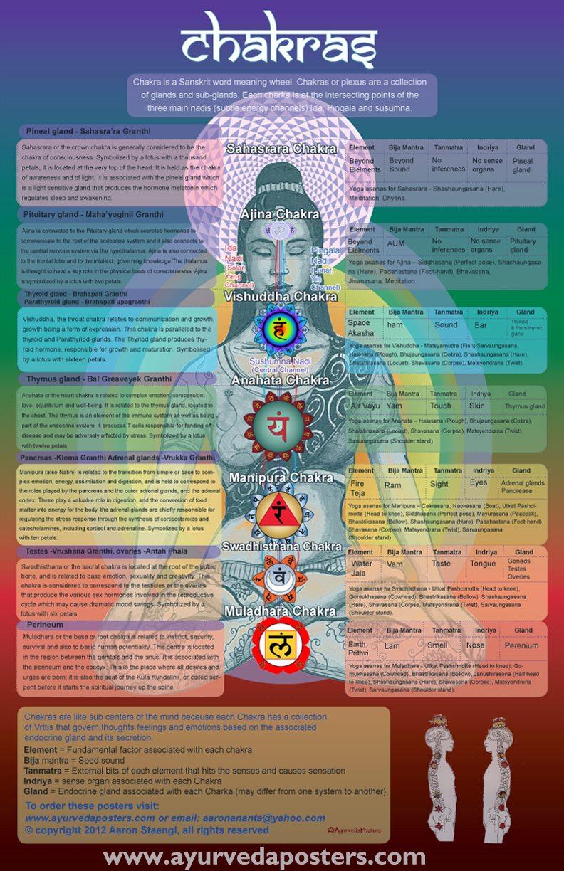 Ayurvedic Medicine – Integrative Medicine